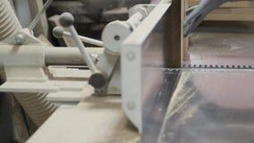 Ο αρσενικός ξυλουργός που χρησιμοποιεί το αεροπλάνο στην ξυλουργική woodshop, εργαζόμενος αλέθει τα ξύλινα κομμάτια για τα έπιπλα απόθεμα βίντεο