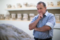 Ο αρσενικός συλλέκτης αξιολογεί την έκθεση στο ιστορικό μουσείο στοκ εικόνες