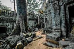 Ο αρχαίος βουδιστικός khmer ναός σε Angkor Wat σύνθετο, Siem συγκεντρώνει το Γ Στοκ Φωτογραφία
