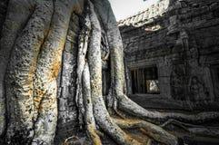 Ο αρχαίος βουδιστικός khmer ναός σε Angkor Wat σύνθετο, Siem συγκεντρώνει το Γ Στοκ φωτογραφία με δικαίωμα ελεύθερης χρήσης