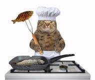 Ο αρχιμάγειρας γατών τηγανίζει τα ψάρια στοκ εικόνες με δικαίωμα ελεύθερης χρήσης