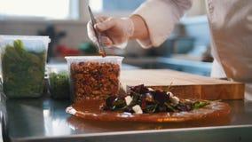 Ο αρχιμάγειρας εξυπηρετεί τη σαλάτα με την τοποθέτηση των συστατικών σε ένα πιάτο και την τοποθέτηση των καρυδιών με τα τσιμπιδάκ απόθεμα βίντεο