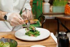 Ο αρχιμάγειρας κάνει το φυτικό εκκινητή Στοκ φωτογραφία με δικαίωμα ελεύθερης χρήσης