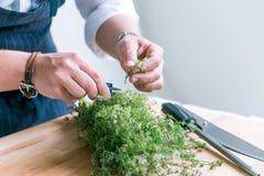Ο αρχιμάγειρας μαγειρεύει το γεύμα Στοκ Εικόνες
