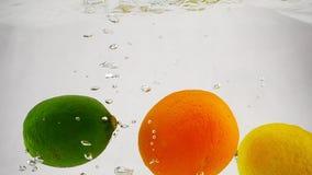 Ο ασβέστης, το λεμόνι και το πορτοκάλι μειώνονται στο νερό στο απομονωμένο υπόβαθρο Τηλεοπτικά εσπεριδοειδή σε σε αργή κίνηση απόθεμα βίντεο