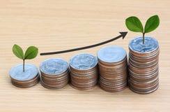 ο ασημένιοι σωρός νομισμάτων και η γραμμή βελών και έχουν treetop Στοκ φωτογραφίες με δικαίωμα ελεύθερης χρήσης