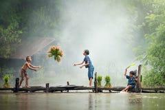 Ο ασιατικός αγρότης παιδιών στο ρύζι διασχίζει την ξύλινη γέφυρα πριν από το γ στοκ εικόνα