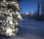 Ο δασικός Βορράς Urals4 χειμερινών βουνών Στοκ φωτογραφία με δικαίωμα ελεύθερης χρήσης