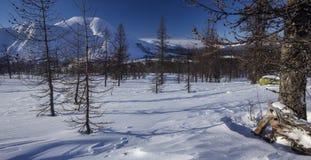 Ο δασικός Βορράς Urals2 χειμερινών βουνών Στοκ Εικόνες