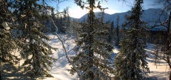 Ο δασικός Βορράς Urals3 χειμερινών βουνών Στοκ Φωτογραφία