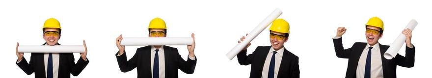 Ο αστείος αρχιτέκτονας με τα σχέδια στο λευκό στοκ εικόνες με δικαίωμα ελεύθερης χρήσης