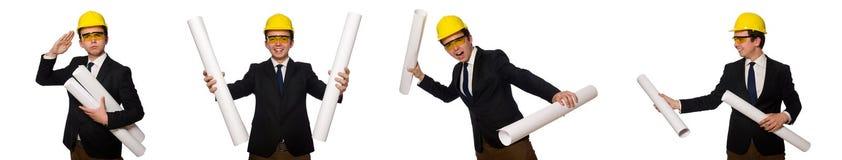 Ο αστείος αρχιτέκτονας με τα σχέδια στο λευκό στοκ εικόνες
