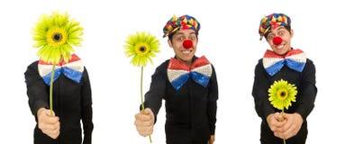 Ο αστείος κλόουν με τα λουλούδια που απομονώνεται στο λευκό στοκ εικόνα