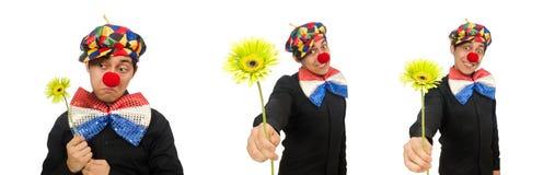 Ο αστείος κλόουν με τα λουλούδια που απομονώνεται στο λευκό στοκ φωτογραφία με δικαίωμα ελεύθερης χρήσης