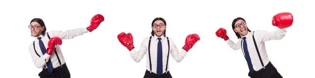 Ο αστείος νέος επιχειρηματίας με τα εγκιβωτίζοντας γάντια που απομονώνεται στο λευκό στοκ φωτογραφίες