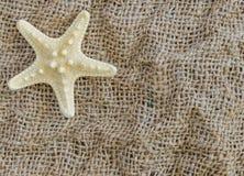 Ο αστερίας βρίσκεται σε ένα όμορφο υπόβαθρο υφάσματος Στοκ Φωτογραφία