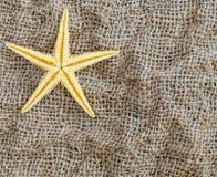 Ο αστερίας βρίσκεται σε ένα όμορφο υπόβαθρο υφάσματος Στοκ εικόνα με δικαίωμα ελεύθερης χρήσης
