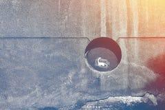 Ο αστικός Dino στο παράθυρο που τονίζεται Στοκ εικόνα με δικαίωμα ελεύθερης χρήσης