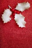 Ο ασυνήθιστος άσπρος ελαιόπρινος Χριστουγέννων με τα μούρα στο κόκκινο ακτινοβολεί Στοκ Εικόνα