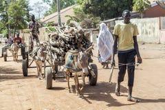 Ο αφρικανικός νεαρός άνδρας φέρνει το καυσόξυλο Στοκ φωτογραφίες με δικαίωμα ελεύθερης χρήσης