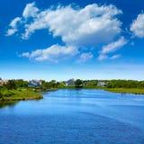 Ο βακαλάος ακρωτηρίων χτυπά τον ποταμό Μασαχουσέτη Στοκ Εικόνες