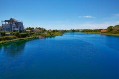 Ο βακαλάος ακρωτηρίων χτυπά τον ποταμό Μασαχουσέτη Στοκ Εικόνα