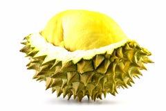 Ο βασιλιάς των φρούτων, durian που απομονώνεται στο άσπρο υπόβαθρο, durian είναι δύσοσμα φρούτα Στοκ Φωτογραφία
