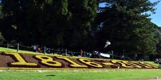 Ο βασιλικός βοτανικός κήπος γιορτάζει τα 200α γενέθλιά του Στοκ φωτογραφίες με δικαίωμα ελεύθερης χρήσης