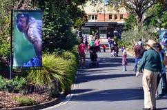 Ο βασιλικός ζωολογικός κήπος κήπων της Μελβούρνης ζωολογικός Στοκ Φωτογραφία