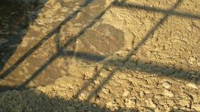 Ο βιολογικός καθαρισμός του νερού αποβλήτων εργοστασίων επεξεργασίας λυμάτων νερού βράζει στη δεξαμενή, ενεργά απόβλητα καθαριστή απόθεμα βίντεο