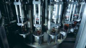 Ο βιομηχανικός μηχανισμός γεμίζει τα μπουκάλια γυαλιού με το οινοπνευματώδες ποτό απόθεμα βίντεο