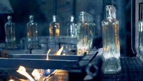 Ο βιομηχανικός Τύπος αφαιρεί τα μπουκάλια γυαλιού από τη μεταφέροντας ζώνη κατά τη διάρκεια της ανόπτησης φιλμ μικρού μήκους