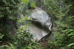Ο βράχος στο ξύλο Στοκ Εικόνες