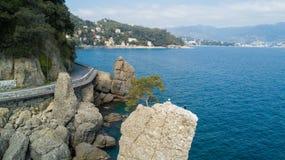 Ο βράχος Cadrega, του θαλάσσιου δέντρου πεύκων, της εναέριας άποψης, της προκυμαίας μεταξύ Santa Margherita Ligure και Portofino  Στοκ Εικόνα
