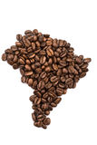 ο βραζιλιανός καφές φασ&omicro στοκ εικόνες