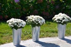 Ο γάμος ανθίζει κοντά στην παραλία Στοκ Φωτογραφία