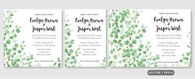 Ο γάμος προσκαλεί, η πρόσκληση rsvp ευχαριστεί εσείς λαναρίζει το διανυσματικό floral gre απεικόνιση αποθεμάτων
