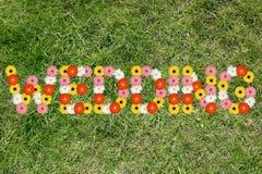 Ο γάμος πρόσκλησης γαμήλιων καρτών παντρεύει τη φύση mea λουλουδιών λουλουδιών Στοκ φωτογραφία με δικαίωμα ελεύθερης χρήσης