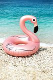 Ο γίγαντας διόγκωσε το φλαμίγκο σε μια παραλία με το νερό turquois της ιόνιας θάλασσας Αλβανία στοκ εικόνες