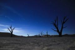 Ο γαλακτώδης τρόπος και ο νυχτερινός ουρανός πέρα από την έρημο Namib, πάρκο Sosusfleu στοκ εικόνα