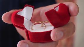 Ο γαμπρός κρατά στο κιβώτιο χεριών χρυσών γαμήλιων δαχτυλιδιών του E χρυσή διακόσμηση δώρων κόσμημα για την αγαπημένη γυναίκα του απόθεμα βίντεο