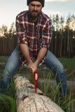 Ο γενειοφόρος υλοτόμος με το καπέλο και το πουκάμισο κόβουν ένα δέντρο στο δάσος Στοκ Φωτογραφία