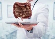 Ο γιατρός με το στηθοσκόπιο και το χωνευτικό systemon η ταμπλέτα παραδίδει το νοσοκομείο Στοκ Εικόνες