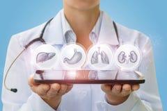 Ο γιατρός παρουσιάζει στα εικονίδια ταμπλετών με τα ανθρώπινα όργανα Στοκ Εικόνες