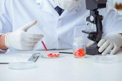 Ο γιατρός που εξετάζει τα νέα φάρμακα για ιατρικούς λόγους Στοκ Φωτογραφίες