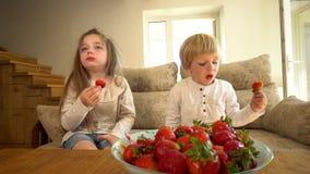 Ο γλυκοί αδελφός και η αδελφή παιδιών τρώνε τις φρέσκες ώριμες φράουλες Φορητός πυροβολισμός απόθεμα βίντεο