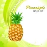 Ο γλυκός ανανάς μου ελεύθερη απεικόνιση δικαιώματος