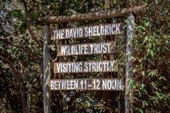 Ο Δαβίδ Sheldrick Wildlife Trust Στοκ φωτογραφία με δικαίωμα ελεύθερης χρήσης