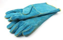 ο δασμός φορά γάντια σε βα&rh Στοκ εικόνες με δικαίωμα ελεύθερης χρήσης