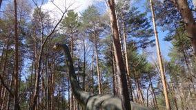 Ο δεινόσαυρος Diplodocus στα ξύλα στοκ εικόνα με δικαίωμα ελεύθερης χρήσης